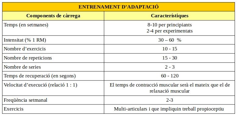 programa-entrenamiento-fuerza-adaptacion