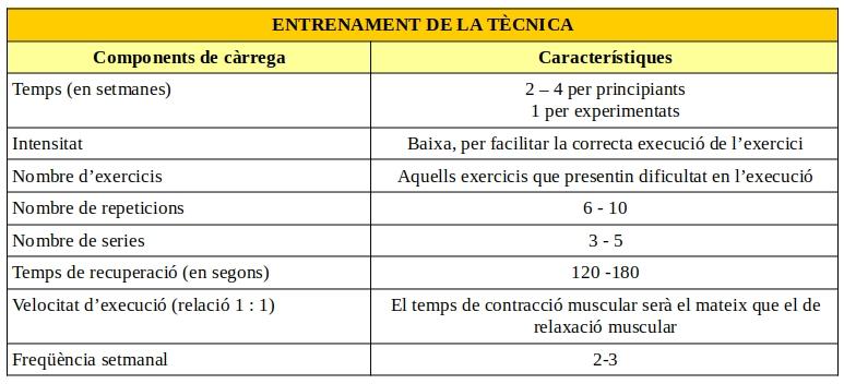 programa-entrenamiento-fuerza-tecnica
